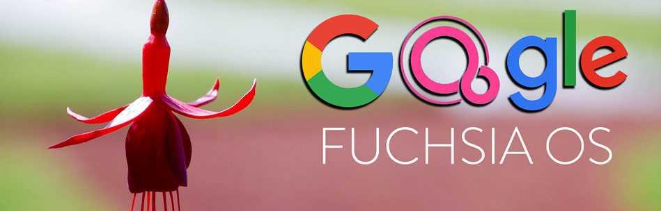 Google Fuchsia - дата выхода, новости и слухи